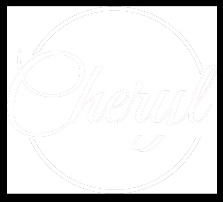 the-vision-coach-white